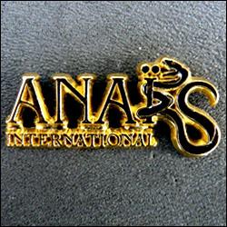 Anais international