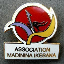 Association madinina ikebana 250