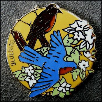 Bluebird 350