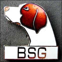 Bsg 250