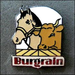 Burgrain