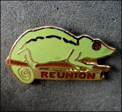 Cameleon reunion