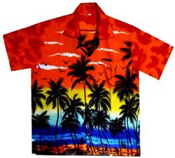 Chemise hawaienne 2