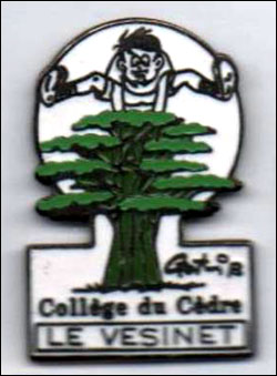College du cedre le vesinet