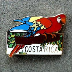 Costa rica parrot 250