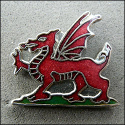 Dragon pays de galles