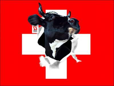 Drapeau suisse 1