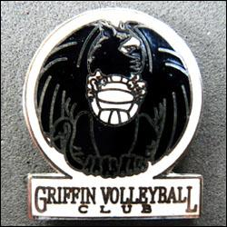 Grffin volleyball 250