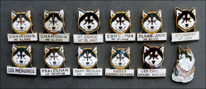 Huskies droits 1