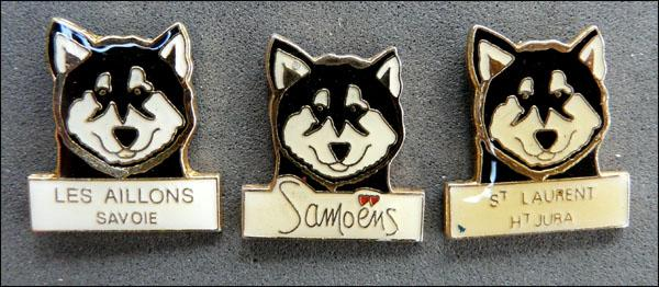 Huskies epoxy 1