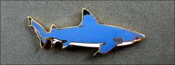 Jys requin a pointes noires