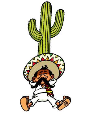 Le petit mexicain accueil