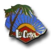 lee-cooper-palmiers-bleu.jpg