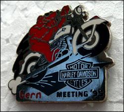 Meeting hd bern