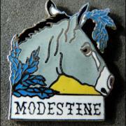 Modestine