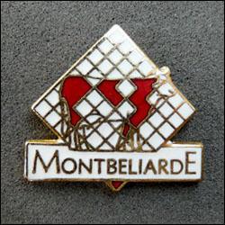 Montbeliarde 250