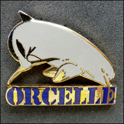 Orcelle