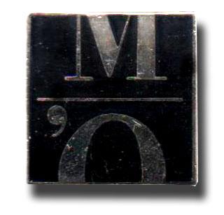 Pin s logo