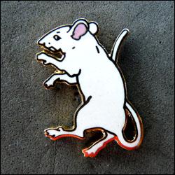 Rat blanc corner