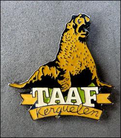 Taaf 24
