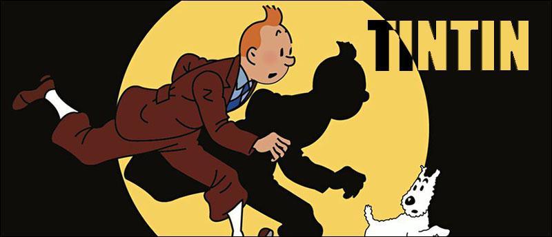 Tintin accueil