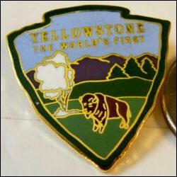 Yellowstone buffalo 2 250