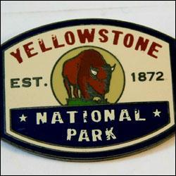 Yellowstone buffalo 3 250