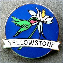 Yellowstone colibri 251